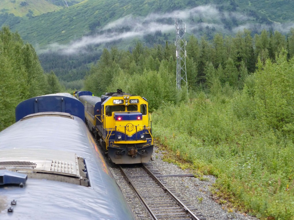 Visit Denali National Park Alaska by rail