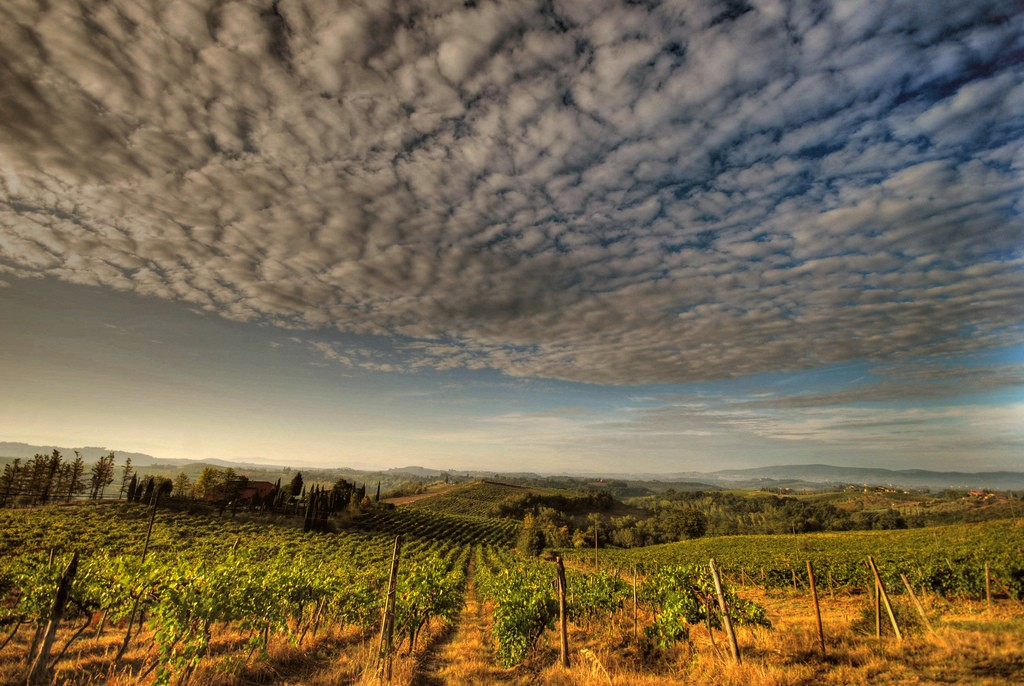 Chianti - Places in Italy - Italy Cities